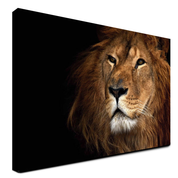 Lion - The Beast (Canvas)