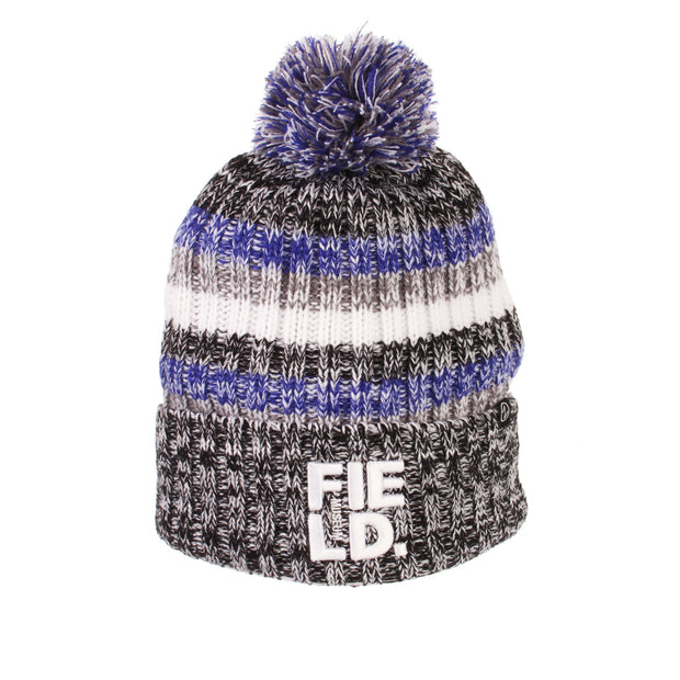 Field Museum Knit Gradient Hat | Field Museum Store