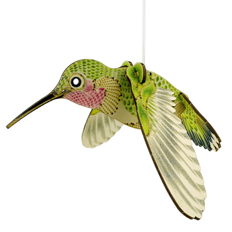 Birch Plywood Hummingbird Model | Field Museum Store