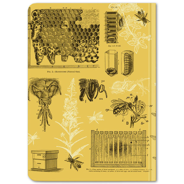 Bees Mini Hardcover Notebook - Dot Grid | Field Museum Store