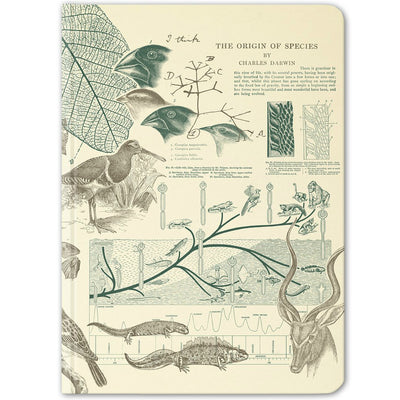 Evolution Hardcover Notebook - Dot Grid | Field Museum Store