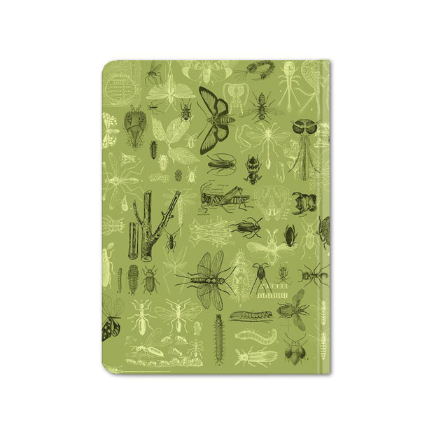 Insect Hardcover Notebook - Dot Grid | Field Museum Store