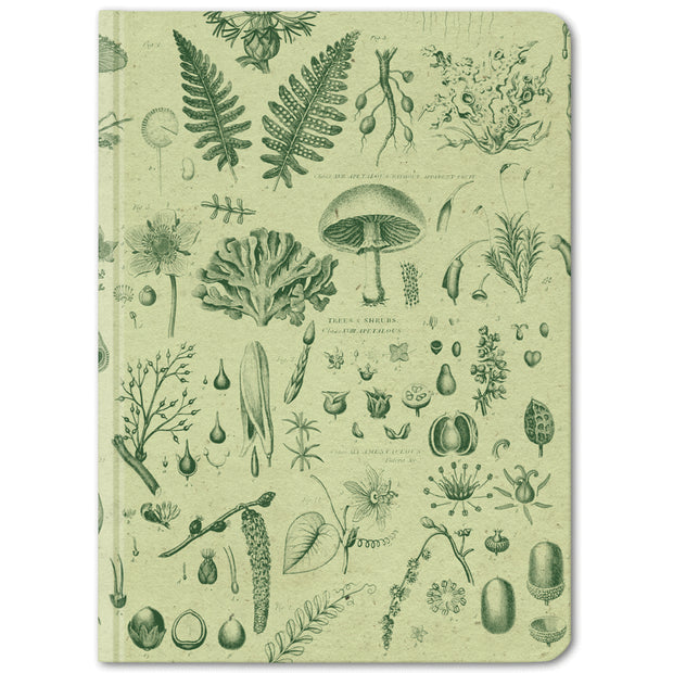 Plants & Fungi Hardcover Notebook - Lined/Blank | Field Museum Store