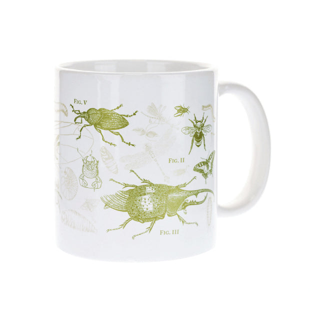 Butterfly & Insect Mega Mug | Field Museum Store