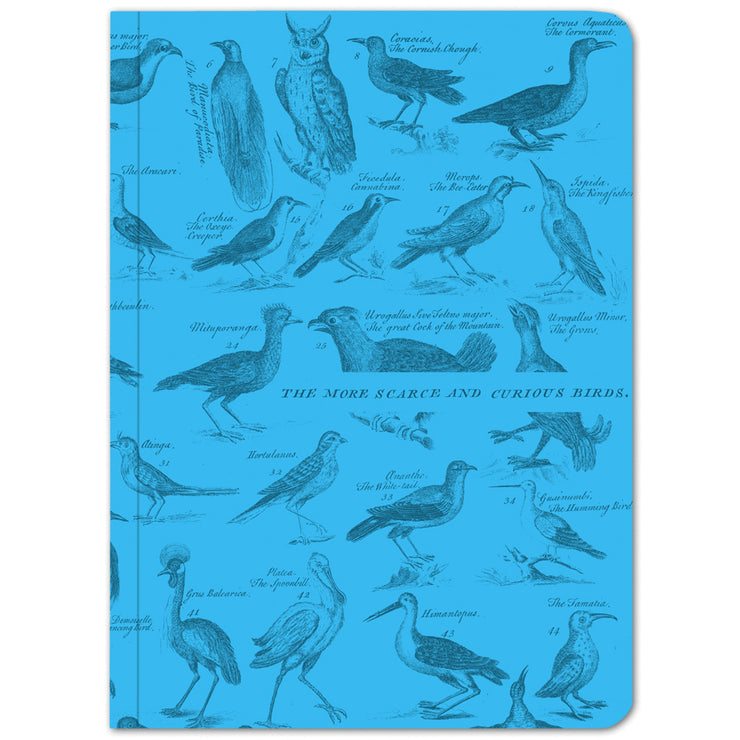 Birds: Ornithology Softcover Notebook - Lined | Field Museum Store