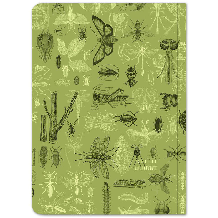 Insects 2 Softcover Notebook - Lined | Field Museum Store