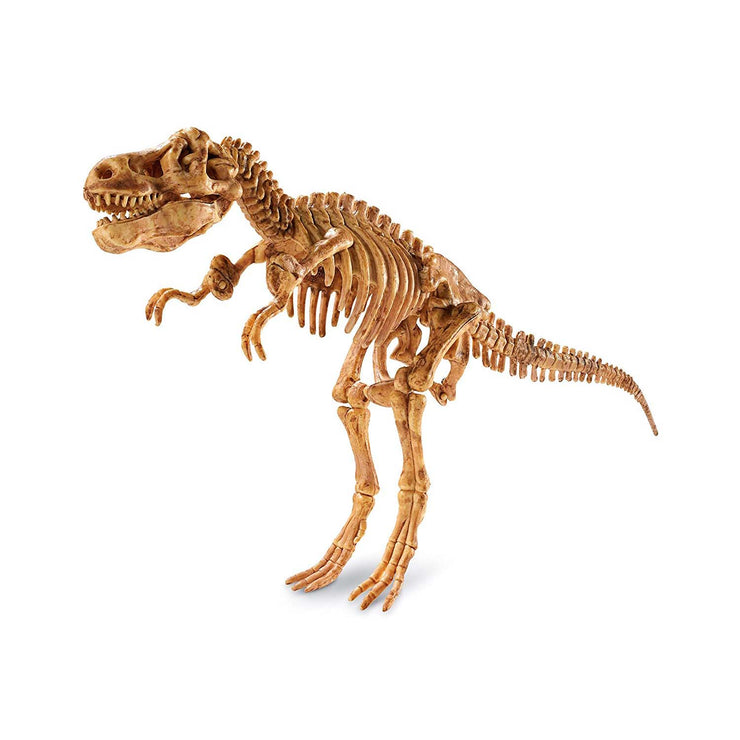 Dig It Up! Tyrannosaurus Rex | Field Museum Store
