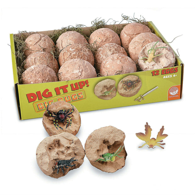 Dig It Up! Big Bugs | Field Museum Store