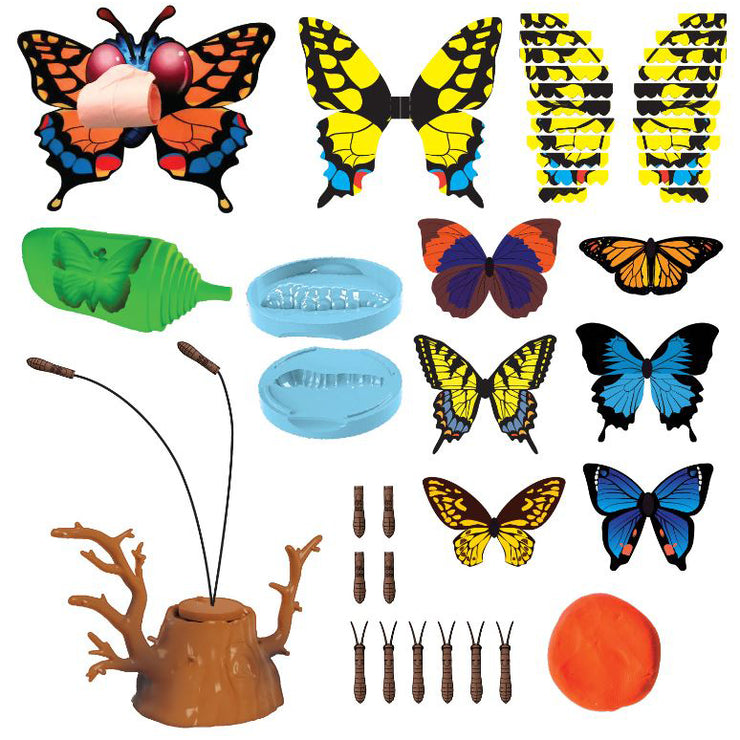 Butterfly Science | Field Museum Store