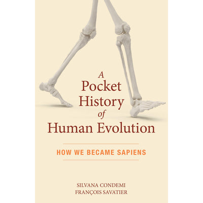 A Pocket History of Human Evolution: How We Became Sapiens | Field Museum Store