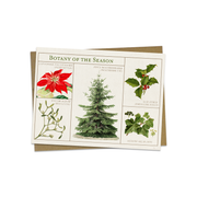 Botany of the Season Card | Field Museum Store