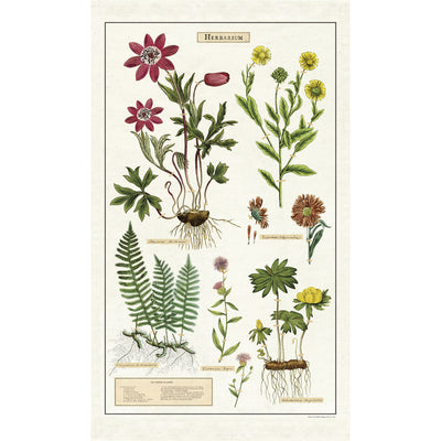Herbarium Cotton Tea Towel | Field Museum Store