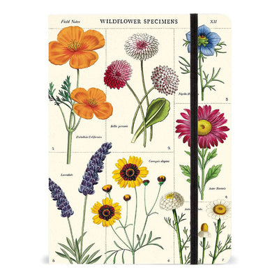 Wildflower Notebook | Field Museum Store