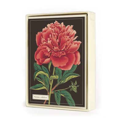 Botanica Greeting Cards Box Set | Field Museum Store