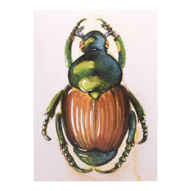 Peggy Macnamara Beetle Greeting Card | Field Museum Store