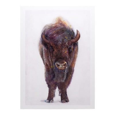Peggy Macnamara Bison Greeting Card | Field Museum Store