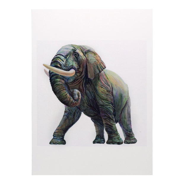 Peggy Macnamara Elephant Greeting Card | Field Museum Store