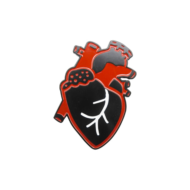Anatomical Heart Magnet | Field Museum Store