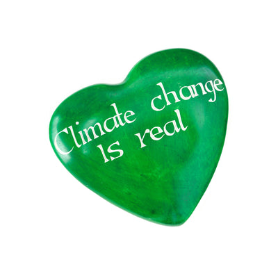 Climate Change is Real Soapstone Heart | Field Museum Store