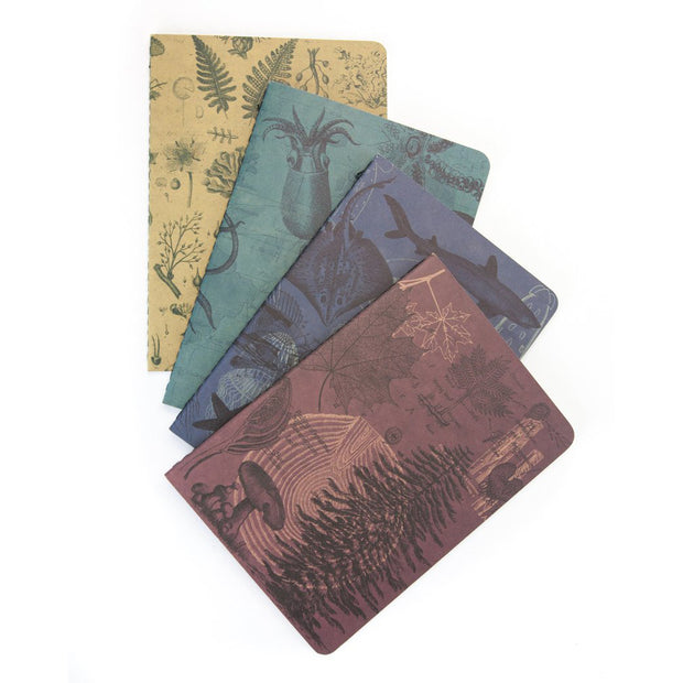 Natural Science Pocket Notebooks | Field Museum Store