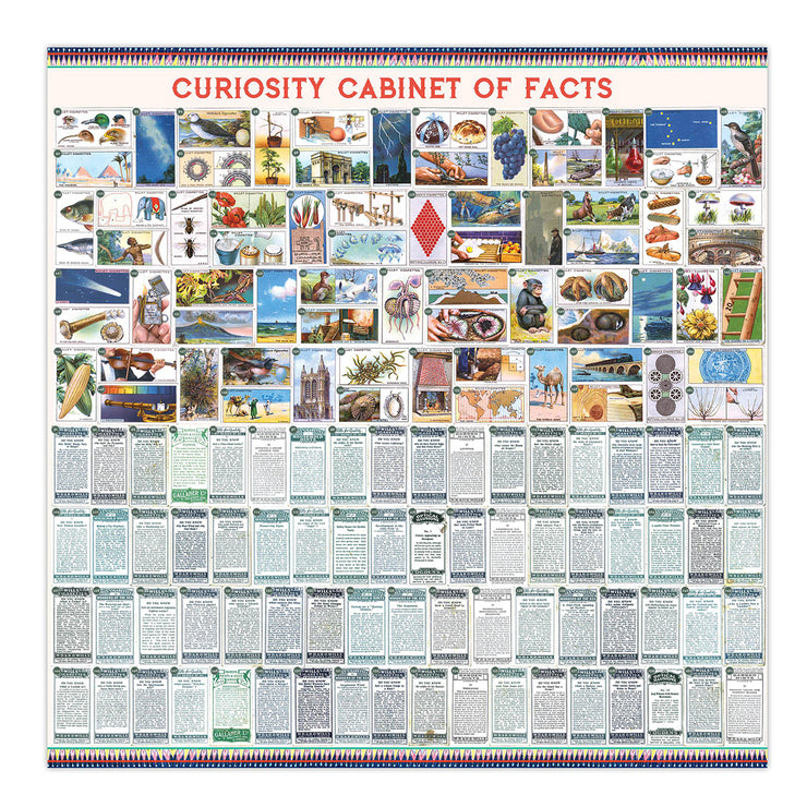 Curiosity Cabinet of Facts 1000 Piece Puzzle | Field Museum Store