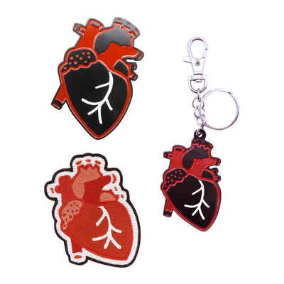 Anatomical Heart Bundle | Field Museum Store