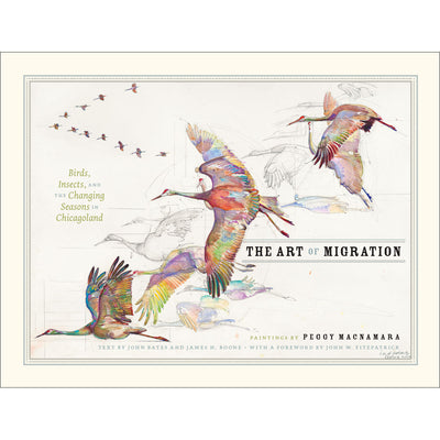 The Art of Migration: Birds Insects and the Changing Seasons in Chicagoland | Field Museum Store
