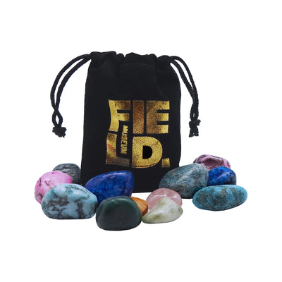 Field Museum Pouch of Rocks | Field Museum Store