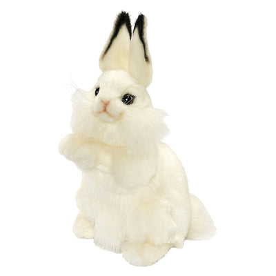 Realistic White Baby Rabbit Plush | Field Museum Store