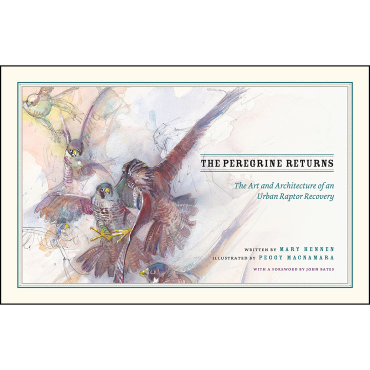 The Peregrine Returns: The Art and Architecture of an Urban Raptor Recovery | Field Museum Store