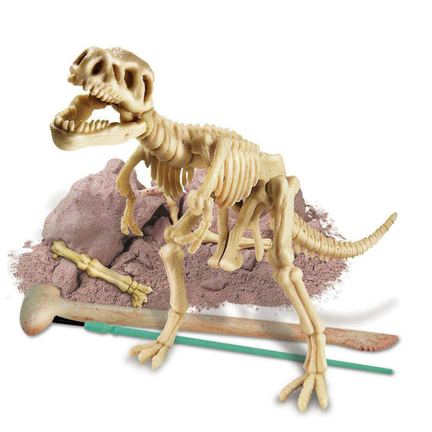 Dig A Dino Tyrannosaurus Rex | Field Museum Store