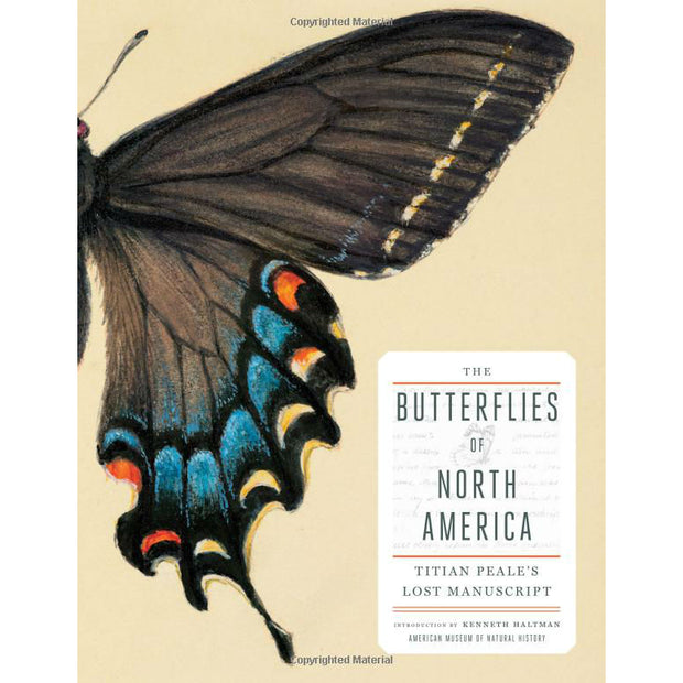 The Butterflies of North America: Titian Peales Lost Manuscript | Field Museum Store