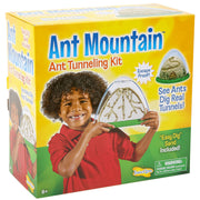 Ant Mountain | Field Museum Store