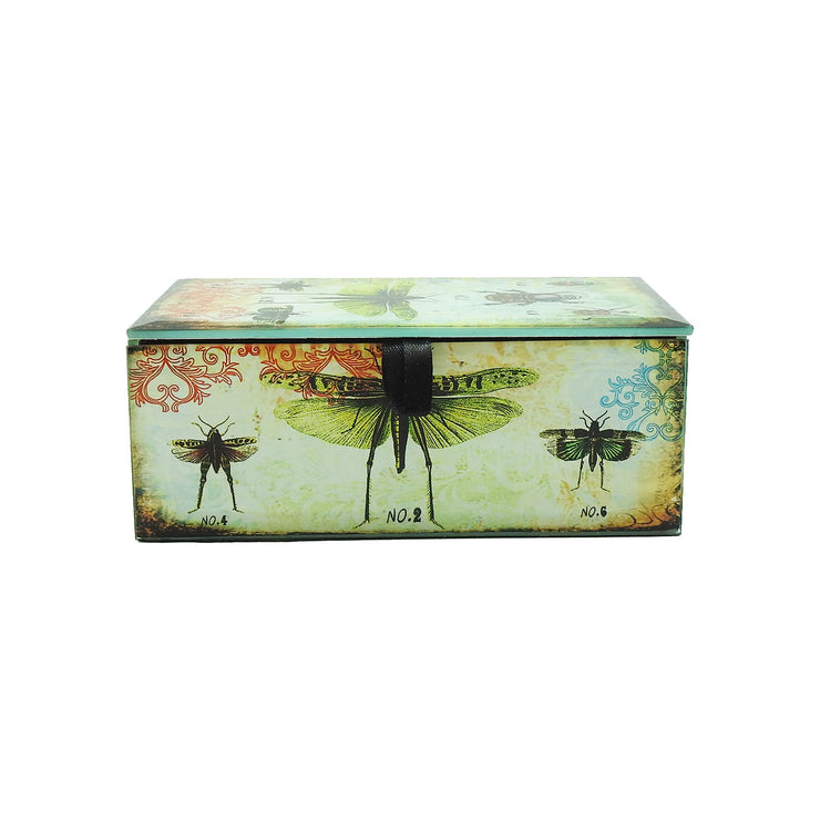 Insect Specimens Glass Box | Field Museum Store