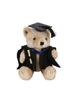 A plush bear wearing academic dress in faculty colours holding a graduation scroll - Faculty of Law - Bachelor