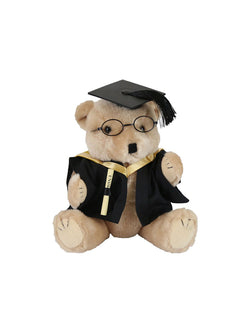 A plush bear wearing academic dress in faculty colours holding a graduation scroll - Faculty of Science - Bachelor