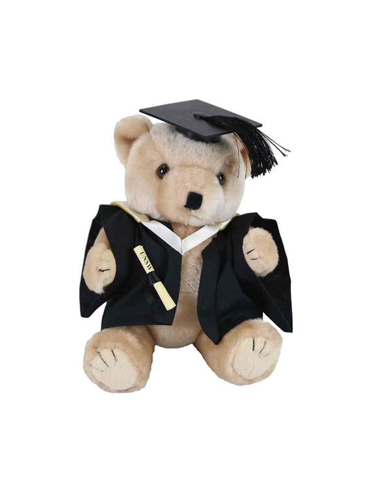 A plush bear wearing academic dress in faculty colours holding a graduation scroll - Business School - Master