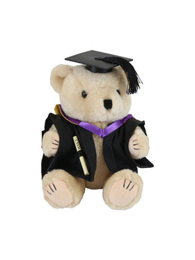 A plush bear wearing academic dress in faculty colours holding a graduation scroll - Faculty of Medicine - Master