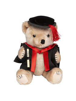 PHD Graduation Bear -A plush bear wearing academic dress in faculty colours holding a graduation scroll - front view