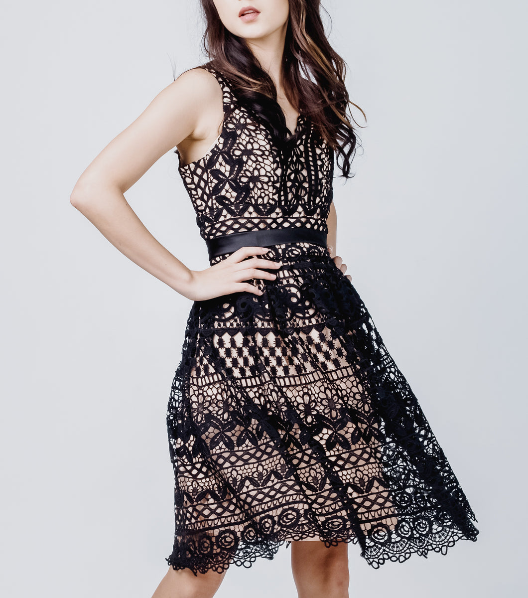 Lanie V-Neck Waisted Lace Skirt Dress