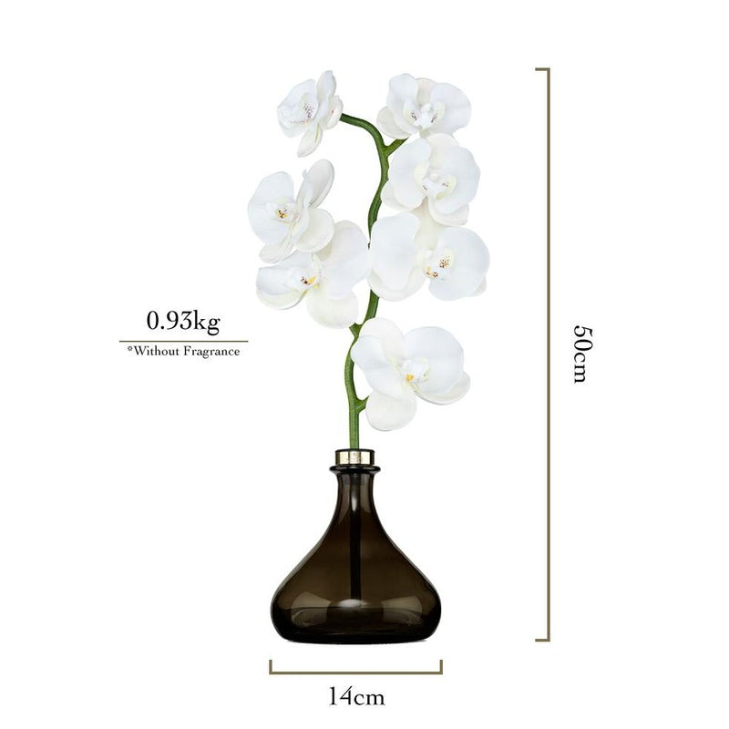 Senti Orchid Flower Diffuser measurements
