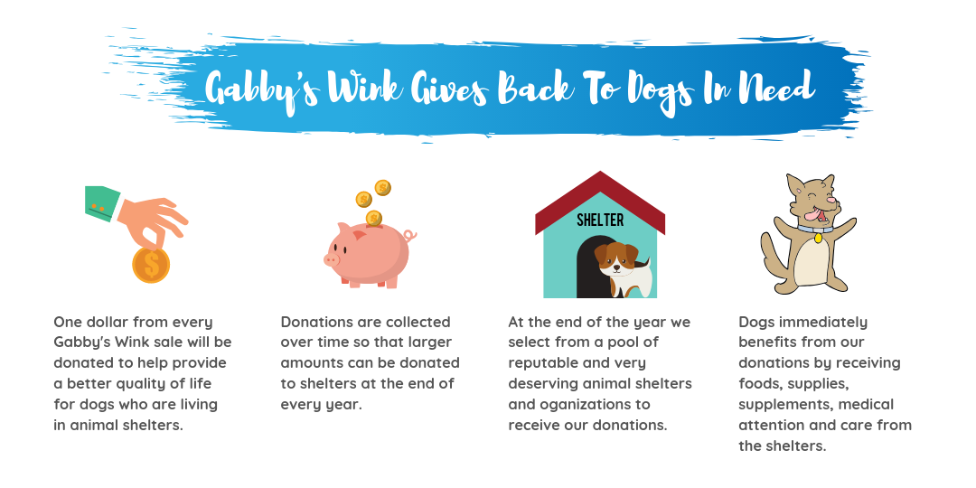 Gabby's Wink - Giving Back to Dogs
