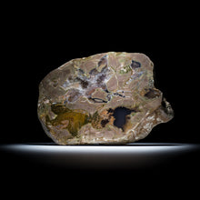 Load image into Gallery viewer, Thunderegg - 7