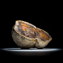 Load image into Gallery viewer, Thunderegg - 8