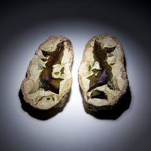 Load image into Gallery viewer, Thunderegg Pair - 1