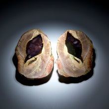 Load image into Gallery viewer, Thunderegg Pair - 2