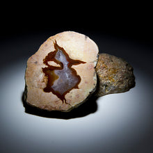 Load image into Gallery viewer, Thunderegg Pair - 3