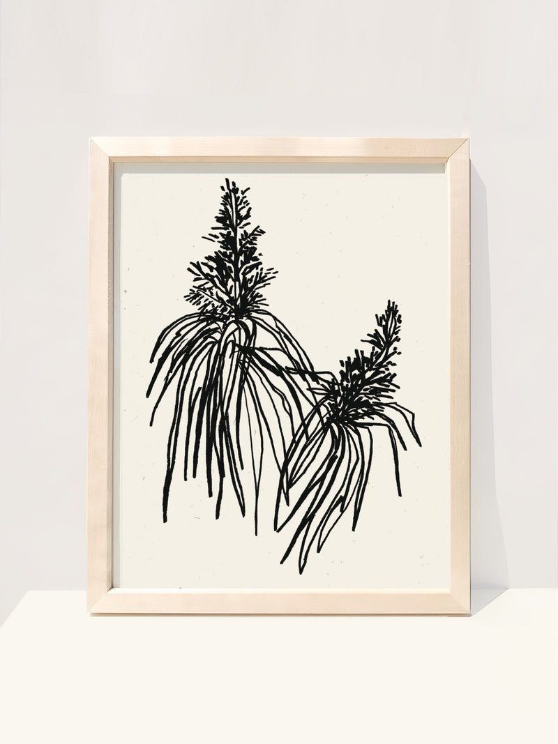 Botanical Art Print in Noir