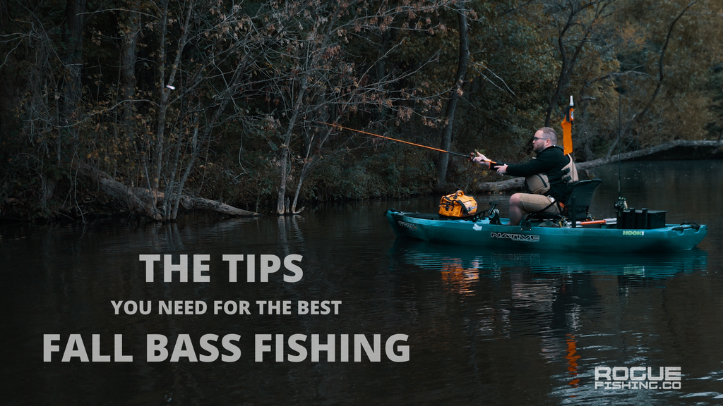 The Tips You Need for the Best Fall Bass Fishing
