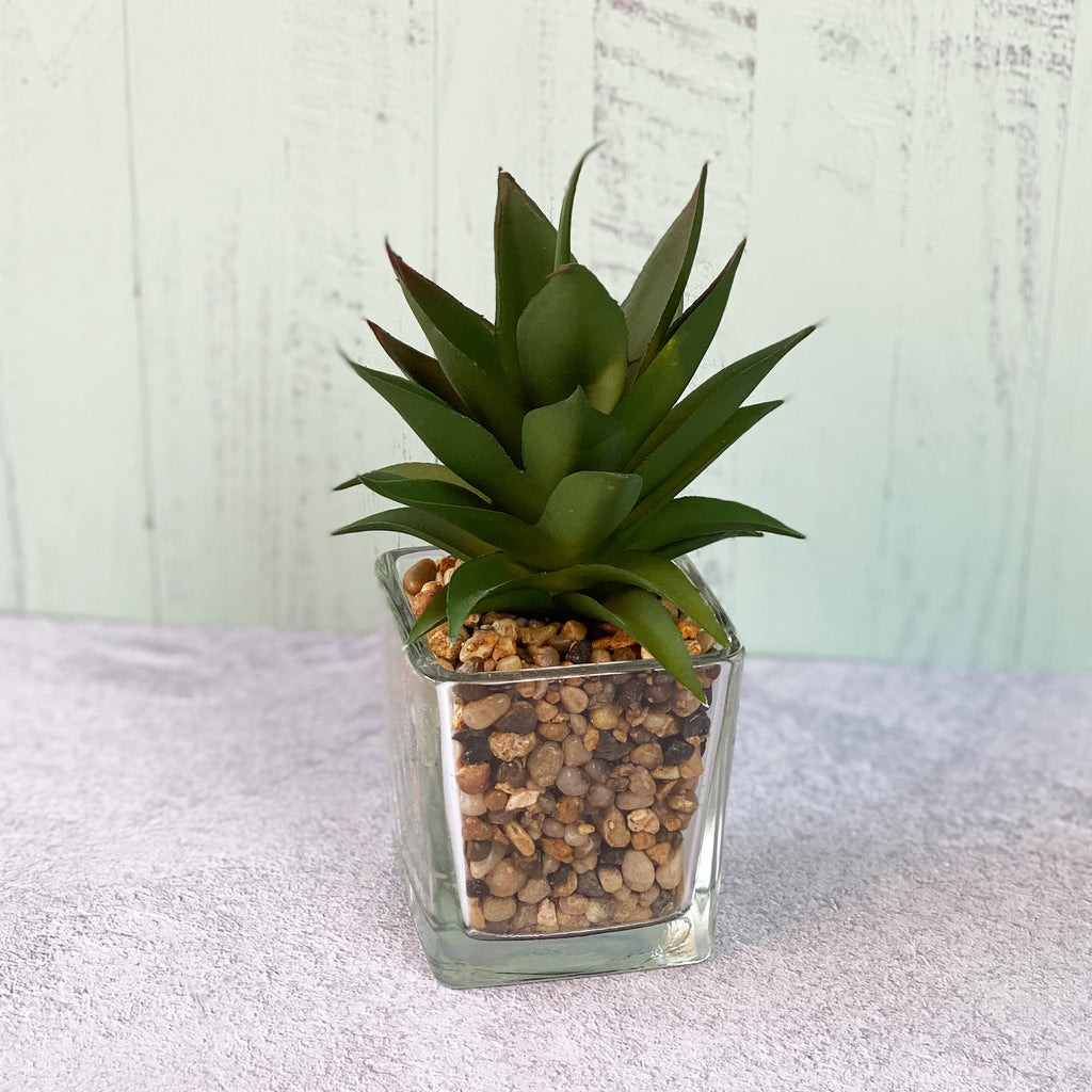 Glass Potted Faux Succulent